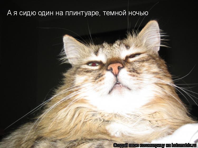 Котоматрица: А я сидю один на плинтуаре, темной ночью