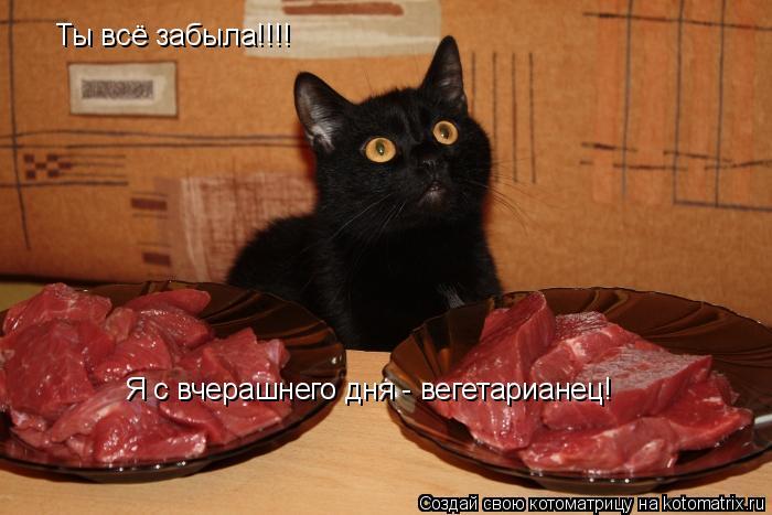 Котоматрица: Ты всё забыла!!!! Я с вчерашнего дня - вегетарианец!