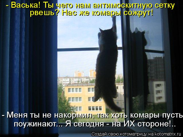 http://kotomatrix.ru/images/lolz/2011/05/17/910141.jpg