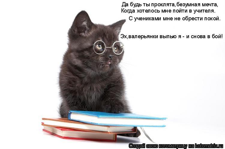 Котоматрица: Да будь ты проклята,безумная мечта, Когда хотелось мне пойти в учителя. С учениками мне не обрести покой. Эх,валерьянки выпью я - и снова в бо