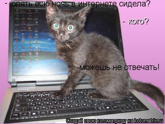 Котоматрица: опять всю ночь в интернете сидела? кого? - - -можешь не отвечать!