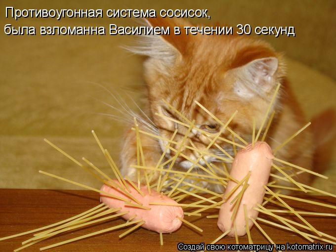 Котоматрица - Противоугонная система сосисок,  была взломанна Василием в течении 30