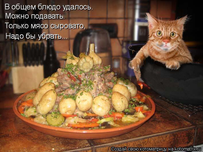 Котоматрица: В общем блюдо удалось. Можно подавать. Только мясо сыровато, Надо бы убрать... Надо бы убрать...