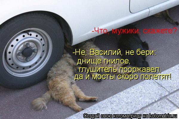 Котоматрица: -Что, мужики, скажете? -Не, Василий, не бери:   днище гнилое,   глушитель проржавел,  да и мосты скоро полетят!