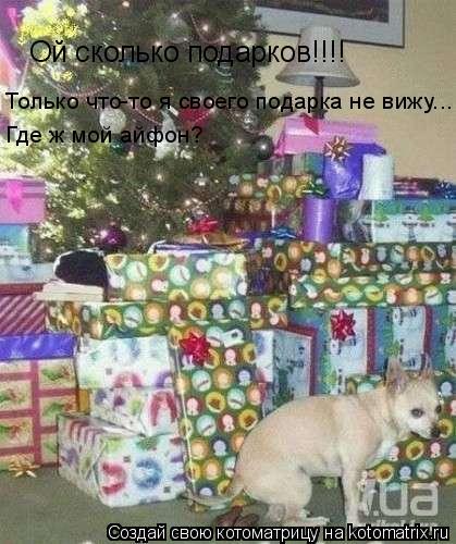 Котоматрица: Ой сколько подарков!!!! Только что-то я своего подарка не вижу...  Где ж мой айфон?