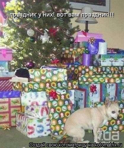 Котоматрица: праздник у них! вот вам праздник!!!