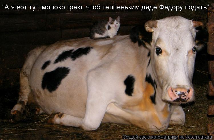 """Котоматрица: """"А я вот тут, молоко грею, чтоб тепленьким дяде Федору подать"""""""