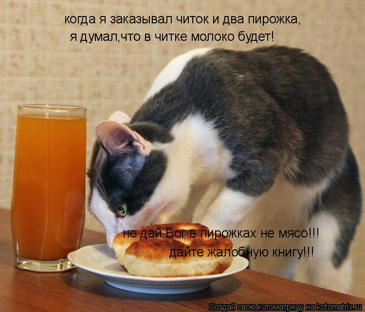 Котоматрица: когда я заказывал читок и два пирожка, я думал,что в читке молоко будет! не дай Бог в пирожках не мясо!!! дайте жалобную книгу!!!