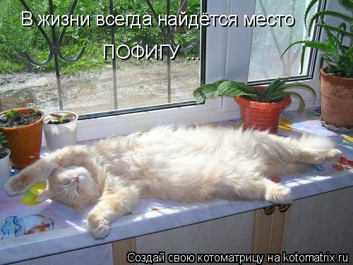 Котоматрица: В жизни всегда найдётся место  ПОФИГУ ...