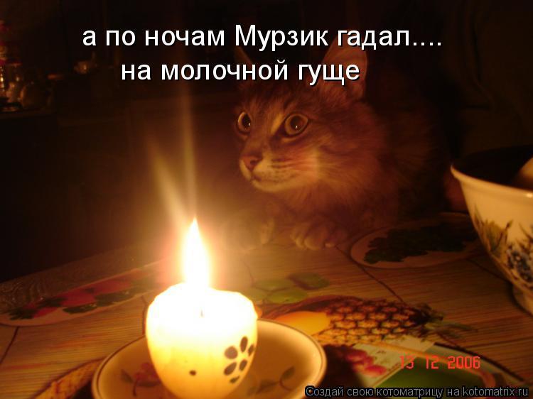Котоматрица: а по ночам Мурзик гадал.... на молочной гуще