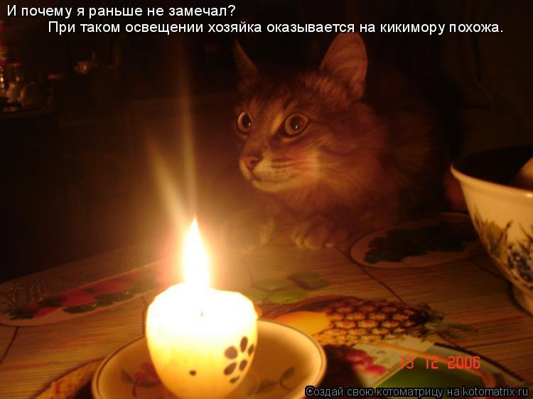 Котоматрица: И почему я раньше не замечал? При таком освещении хозяйка оказывается на кикимору похожа.
