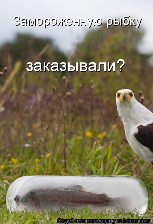 Котоматрица: Замороженную рыбку заказывали?