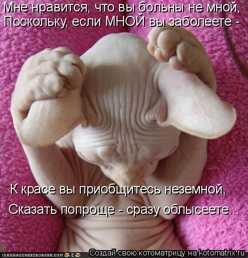 Котоматрица: Мне нравится, что вы больны не мной,  Поскольку, если МНОЙ вы заболеете - К красе вы приобщитесь неземной,  Сказать попроще - сразу облысеете...