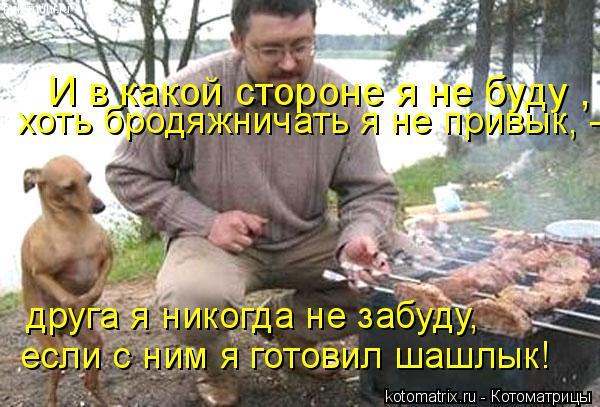 Котоматрица: И в какой стороне я не буду ,  хоть бродяжничать я не привык, -  друга я никогда не забуду,  если с ним я готовил шашлык!