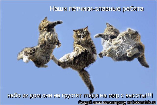 Котоматрица: Наши лётчики-славные ребята небо их дом,они не грустят глядя на мир с высоты!!!!