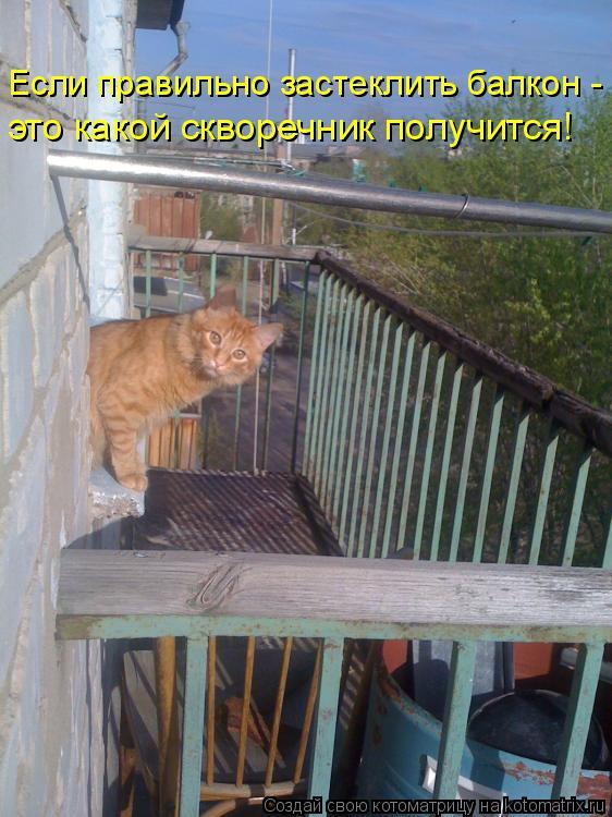 Котоматрица - Если правильно застеклить балкон -  это какой скворечник получится!