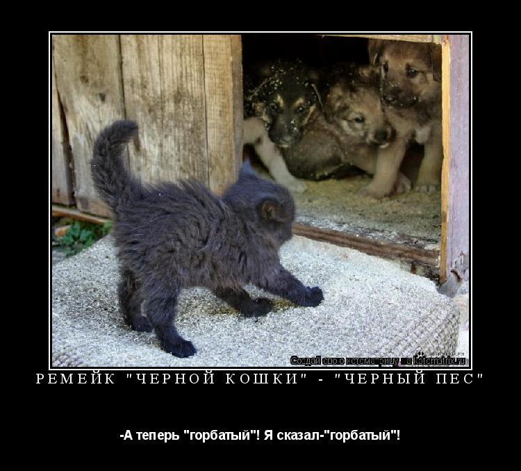 """Котоматрица: ремейк """"чёрной кошки"""" - """"чёрный пёс"""" -А теперь """"горбатый""""! Я сказал-""""горбатый""""!"""