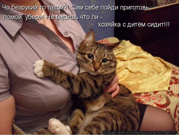 Котоматрица: Чо безрукий то такой?! Сам себе пойди приготовь, помой, убери! Не видишь что ли -  хозяйка с дитём сидит!!!