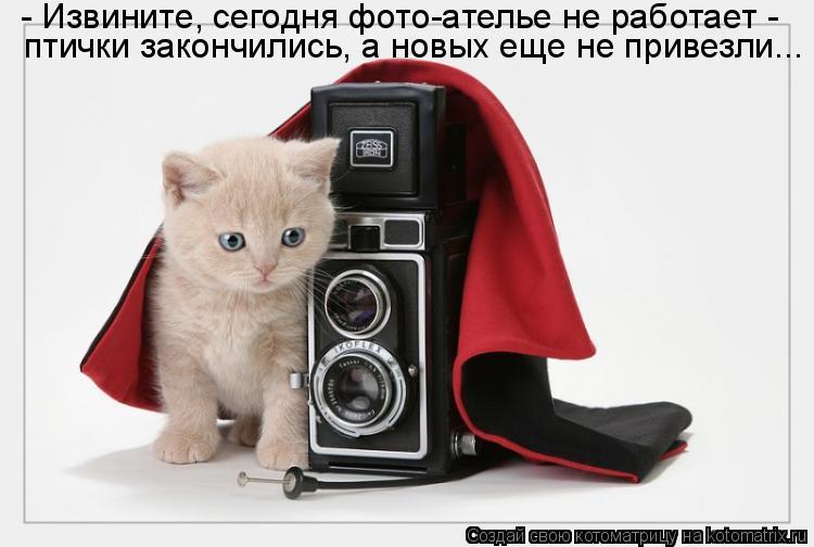http://kotomatrix.ru/images/lolz/2011/05/19/910970.jpg