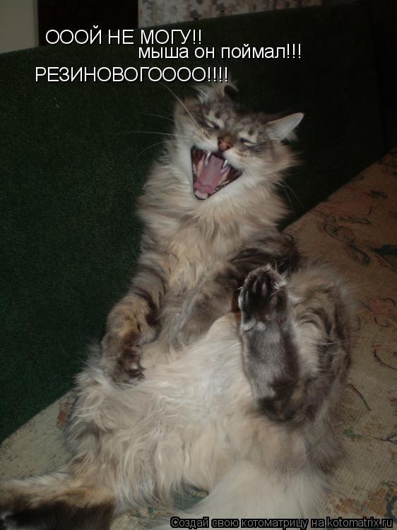 Котоматрица: ОООЙ НЕ МОГУ!! мыша он поймал!!! РЕЗИНОВОГОООО!!!!