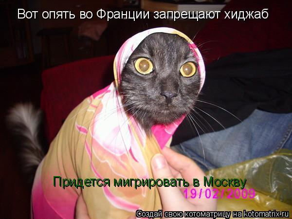 Котоматрица: Вот опять во Франции запрещают хиджаб Придется мигрировать в Москву