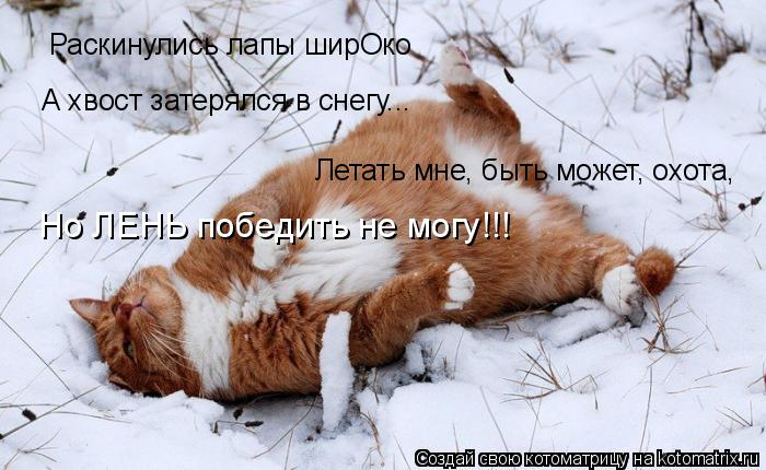 Котоматрица: Раскинулись лапы ширОко А хвост затерялся в снегу... Летать мне, быть может, охота, Но ЛЕНЬ победить не могу!!!