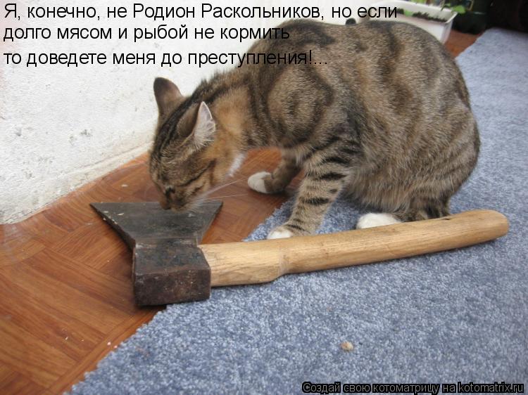 Котоматрица: Я, конечно, не Родион Раскольников, но если долго мясом и рыбой не кормить то доведете меня до преступления!...