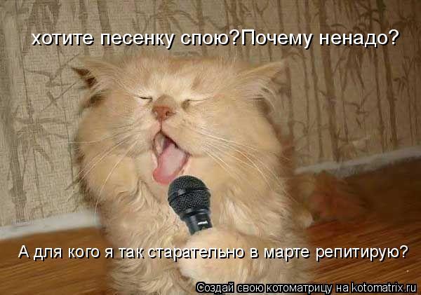 Котоматрица: хотите песенку спою?Почему ненадо? А для кого я так старательно в марте репитирую?