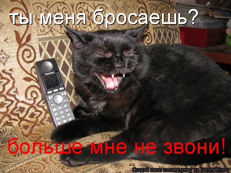 Котоматрица: ты меня бросаешь? больше мне не звони!