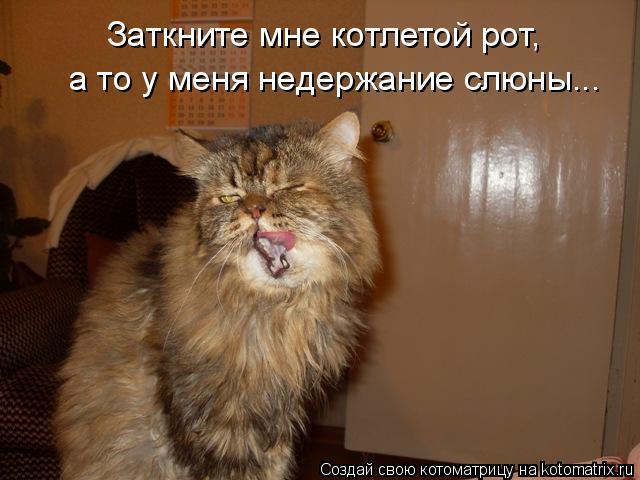 Котоматрица: Заткните мне котлетой рот, а то у меня недержание слюны...