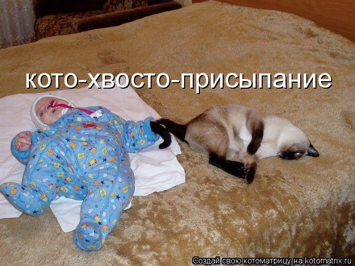 Котоматрица: кото-хвосто-присыпание