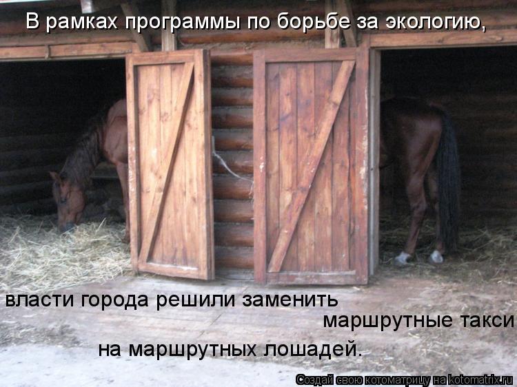 Котоматрица: В рамках программы по борьбе за экологию, власти города решили заменить  маршрутные такси на маршрутных лошадей.
