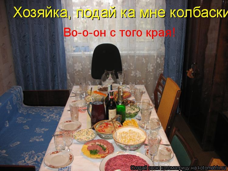 Котоматрица: Хозяйка, подай ка мне колбаски  Во-о-он с того края!