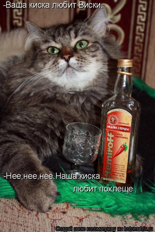 Котоматрица: -Ваша киска любит Виски™ -Нее,нее,нее.Наша киска  любит похлеще