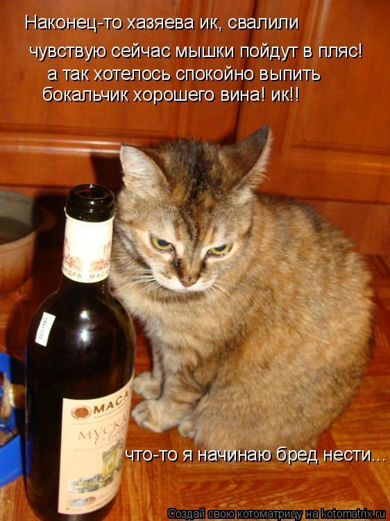 Котоматрица: Наконец-то хазяева ик, свалили чувствую сейчас мышки пойдут в пляс! а так хотелось спокойно выпить  бокальчик хорошего вина! ик!!  что-то я на