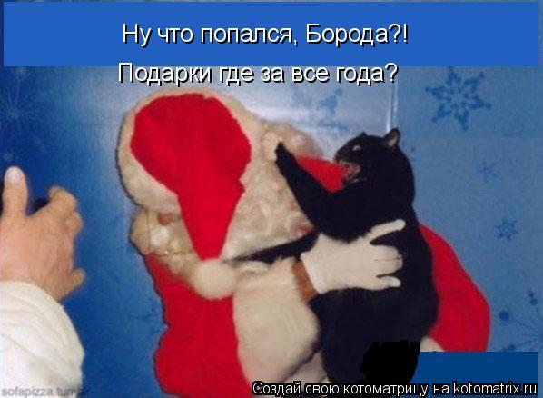 Котоматрица: Ну что попался, Борода?! Подарки где за все года?