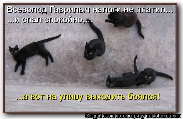Всеволод Гаврилыч налоги не платил... ...и спал спокойно,... ...а вот на улицу выходить боялся!