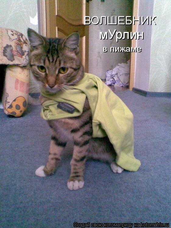 Котоматрица: ВОЛШЕБНИК мУрлин в пижаме