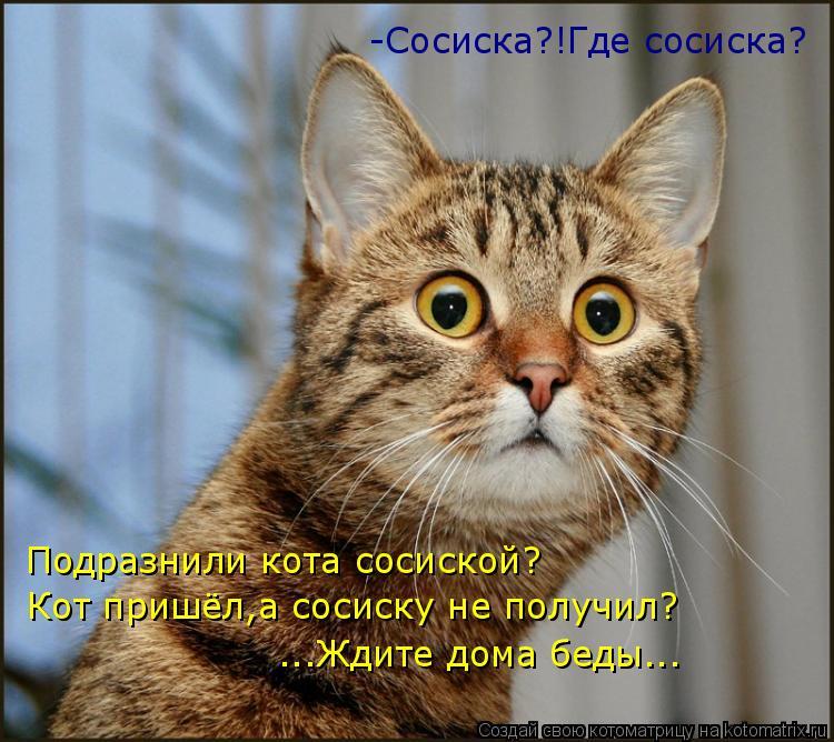 Котоматрица: -Сосиска?!Где сосиска? Подразнили кота сосиской? Кот пришёл,а сосиску не получил? ...Ждите дома беды...
