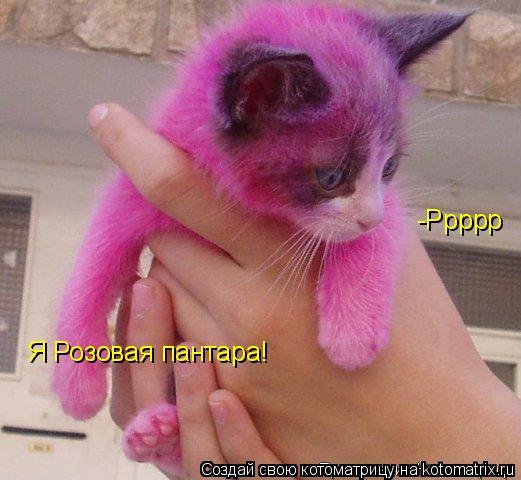Котоматрица: Я Розовая пантара! -Ррррр