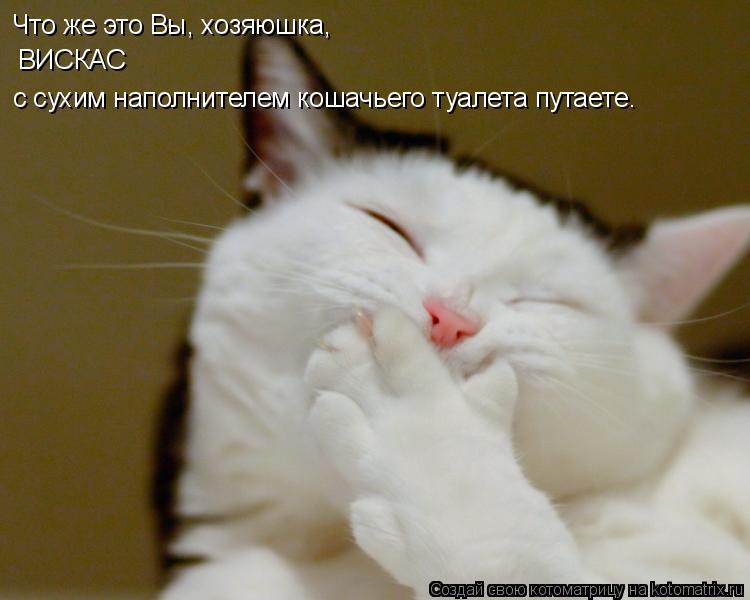 Котоматрица: Что же это Вы, хозяюшка,  ВИСКАС  с сухим наполнителем кошачьего туалета путаете…