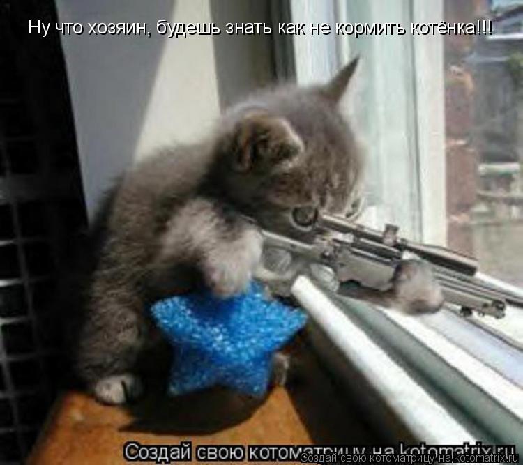 Котоматрица: Ну что хозяин, будешь знать как не кормить котёнка!!!
