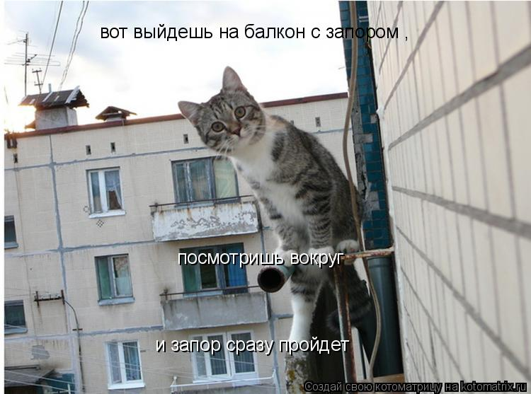 Котоматрица: вот выйдешь на балкон с запором , посмотришь вокруг  и запор сразу пройдет
