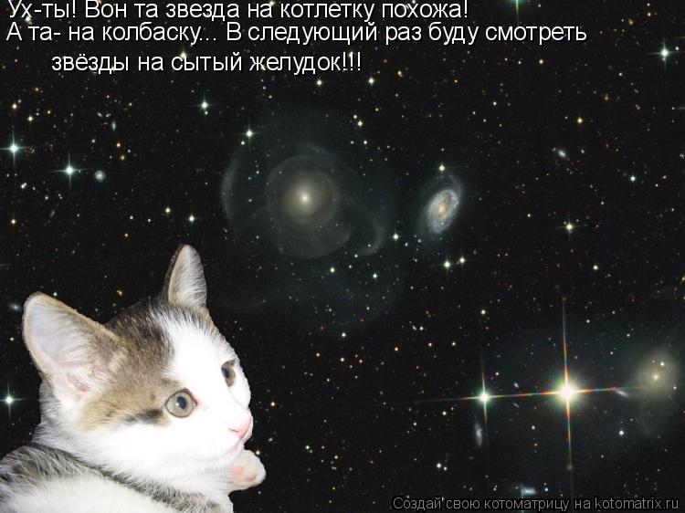 Котоматрица: Ух-ты! Вон та звезда на котлетку похожа!  А та- на колбаску... В следующий раз буду смотреть  звёзды на сытый желудок!!!