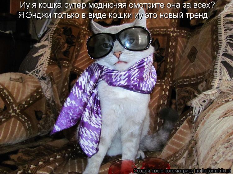 Котоматрица: Иу я кошка супер моднючяя смотрите она за всех? Я Энджи только в виде кошки иу это новый тренд!