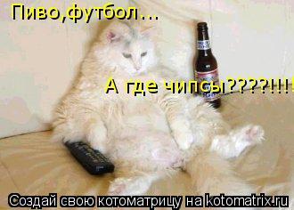Котоматрица: Пиво,футбол... А где чипсы????!!!!