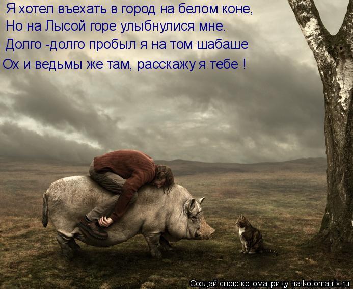 Котоматрица: Я хотел въехать в город на белом коне, Но на Лысой горе улыбнулися мне. Долго -долго пробыл я на том шабаше Ох и ведьмы же там, расскажу я тебе