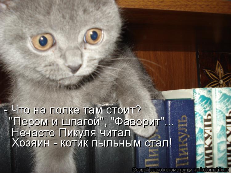 """Котоматрица: - Что на полке там стоит? """"Пером и шпагой"""", """"Фаворит""""... Нечасто Пикуля читал Хозяин - котик пыльным стал!"""