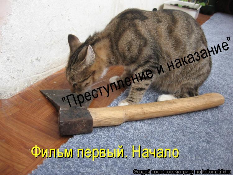 """Котоматрица: """"Преступление и наказание"""" Фильм первый. Начало"""