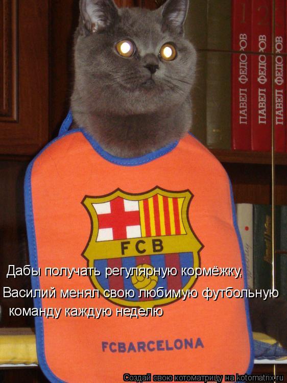 Котоматрица: Дабы получать регулярную кормёжку, Василий менял свою любимую футбольную команду каждую неделю